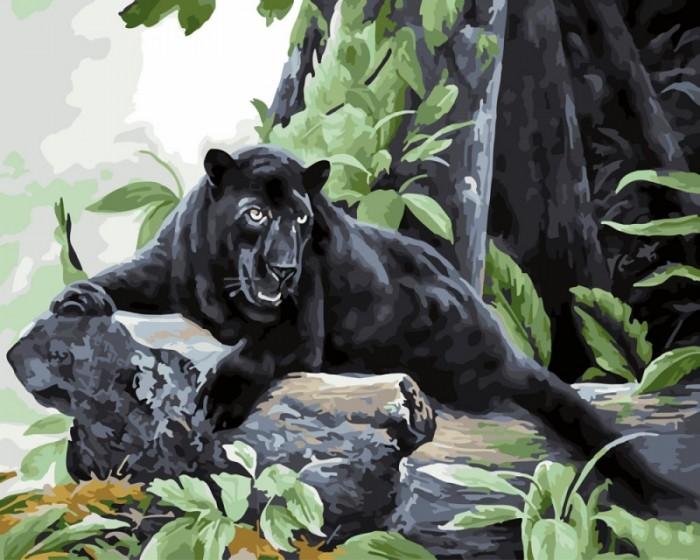 Купить Картины по номерам, Paintboy Картина по номерам Пантера 40х50 см