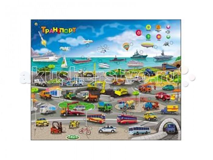 Развитие и школа , Обучающие плакаты Рыжий кот Звуковой плакат Транспорт арт: 86724 -  Обучающие плакаты