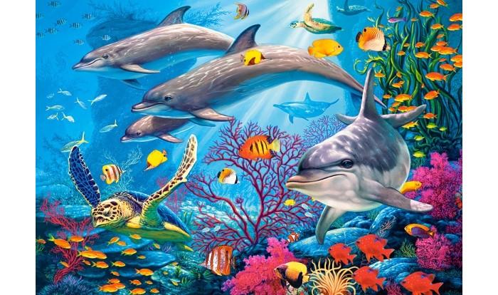 Castorland Пазлы Тайны рифа (1500 деталей)
