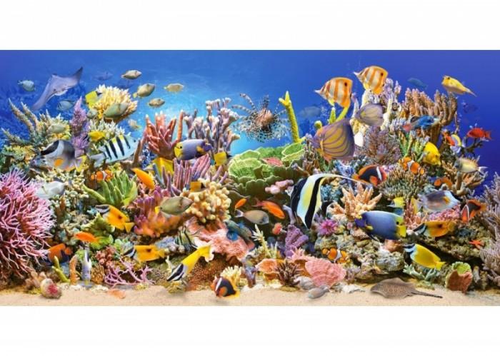 Купить Castorland Пазлы Подводный мир (4000 деталей)