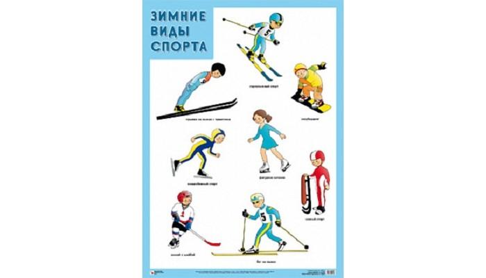 Обучающие плакаты Мозаика-Синтез Развивающий плакат Зимние виды спорта