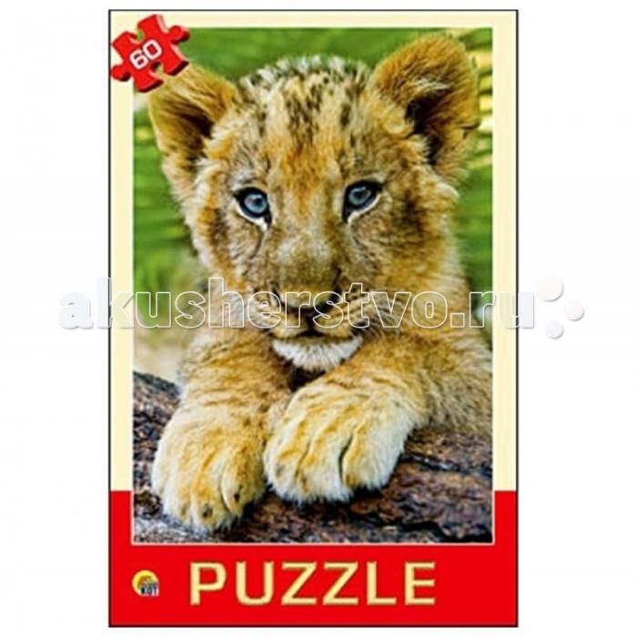 Пазлы Рыжий кот Пазлы Любимое животное (60 элементов)