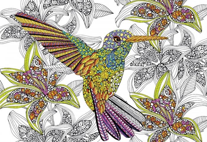 Пазлы Educa Пазл-раскраска Колибри (300 деталей) educa пазл 1500 деталей санкт петербург