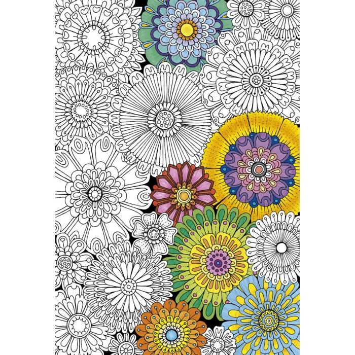 Купить Пазлы, Educa Пазл-раскраска Цветы (300 деталей)