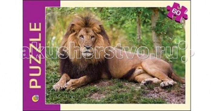 Пазлы Рыжий кот Пазлы Царь зверей (60 элементов) картина на холсте decoretto art царь зверей 60 х 30 см