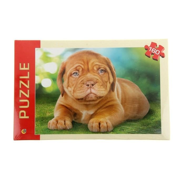 Пазлы Рыжий кот Пазлы Любимый щенок (160 элементов)