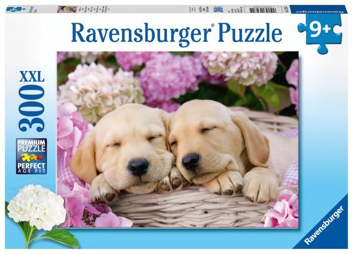 Ravensburger Пазл Сладкие щенки в корзинке (300 элементов)