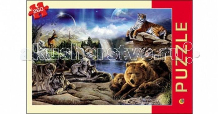 Пазлы Рыжий кот Пазлы Чудесный мир (260 элементов)