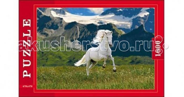 цены  Пазлы Рыжий кот Пазлы Белая лошадь (1000 элементов)
