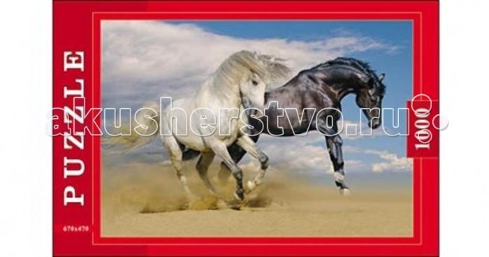 Пазлы Рыжий кот Пазлы Две лошади (1000 элементов) лошади 1000 фотографий