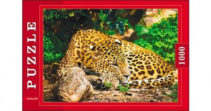 Пазлы Рыжий кот Пазлы Леопард (1000 элементов) рыжий кот пазл ладья рыжий кот 1000 деталей