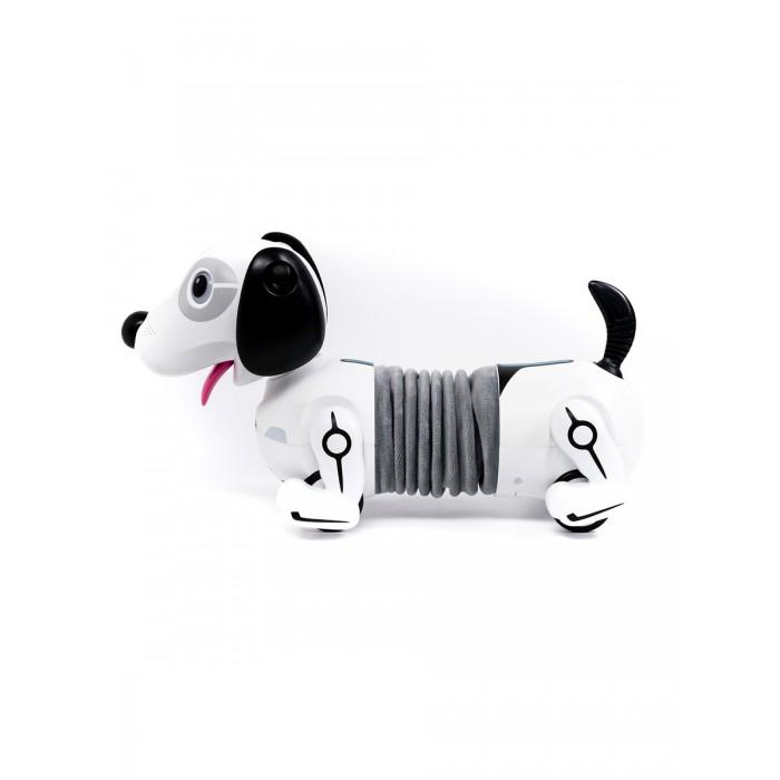 Ycoo Собака робот Дэкел фото