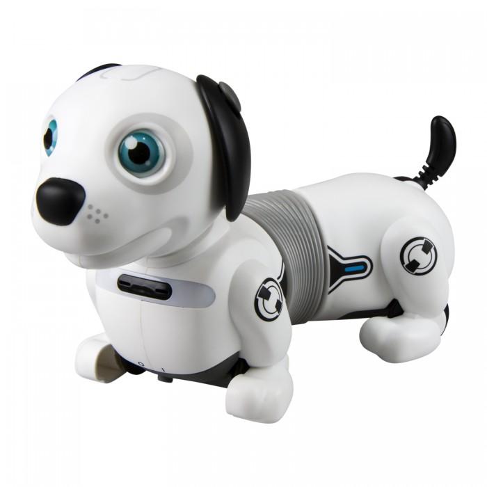 Ycoo Собака робот Дэкел Джуниор фото