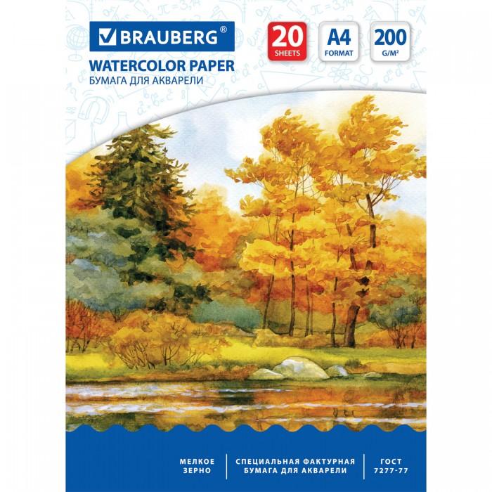 Принадлежности для рисования Brauberg Папка акварели Осенний лес А4 20 листов