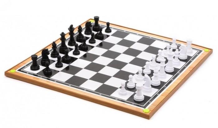 Купить Настольные игры, Наша Игрушка Шахматы и шашки 2 в 1 с игровым полем 38х38 см