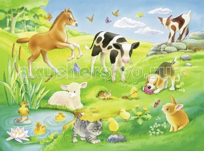 Пазлы Ravensburger Пазл Малыши животных на лугу 16 элементов пазлы ravensburger пазл коровы на лугу 15 элементов