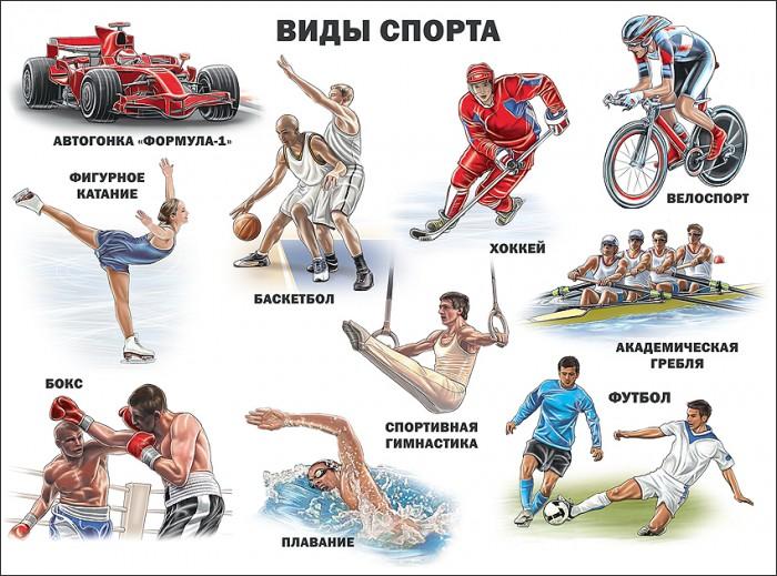 Обучающие плакаты Проф-Пресс Плакат Виды спорта