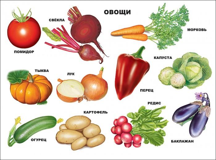 Обучающие плакаты Проф-Пресс Плакат Овощи 978-5-378-05231-8