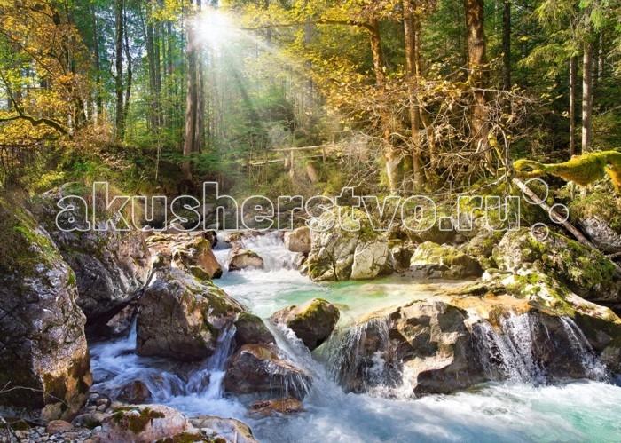 Castorland Пазл Лесной ручей 2000 элементов фото