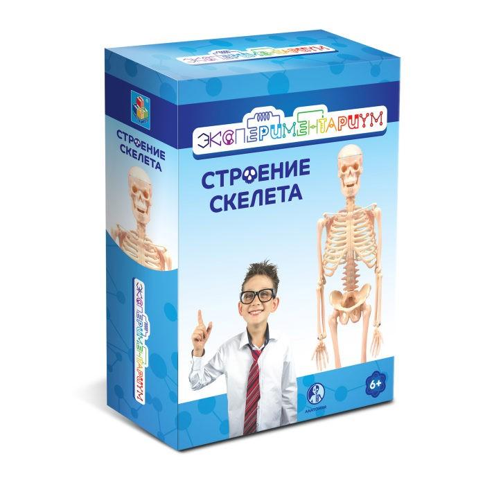 Наборы для опытов и экспериментов Экспериментариум Набор Строение скелета наборы для опытов и экспериментов экспериментариум набор конструируем пылесос