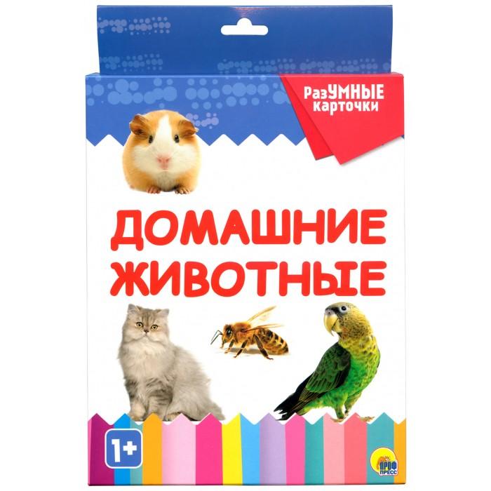 Раннее развитие Проф-Пресс Разумные карточки Домашние животные недорого