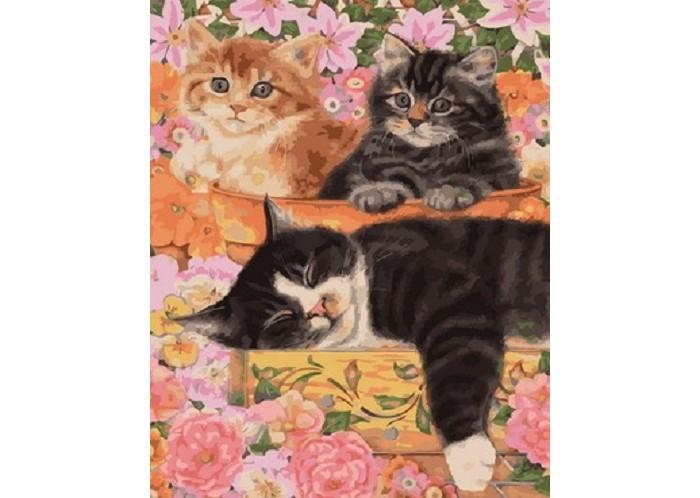 Купить Картины по номерам, Paintboy Картина по номерам Три кота