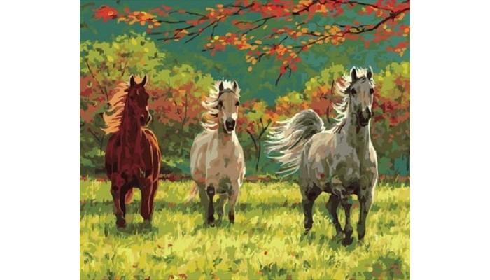 Купить Картины по номерам, Paintboy Картина по номерам Три грации