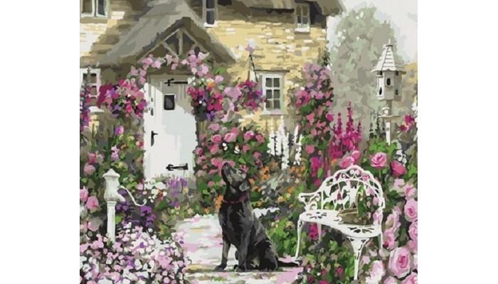 Фото - Картины по номерам Paintboy Картина по номерам Любопытная собака картины по номерам paintboy картина по номерам веселый ангелок