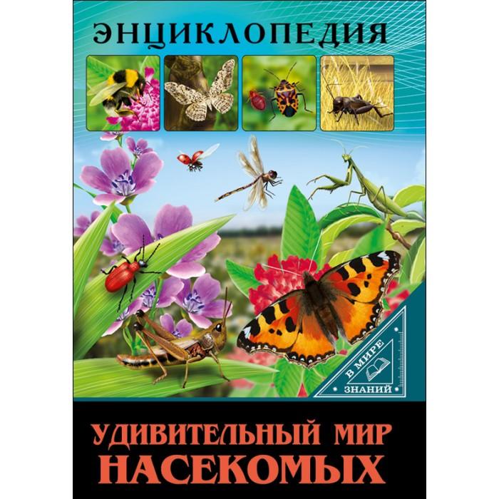 Фото - Энциклопедии Проф-Пресс Энциклопедия В мире знаний Удивительный мир насекомых композиция удивительный мир
