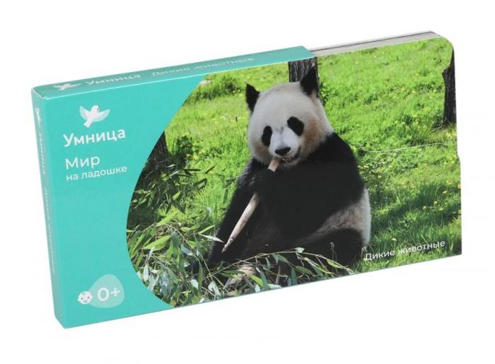 Книжки-картонки Умница Мир на ладошке Дикие животные