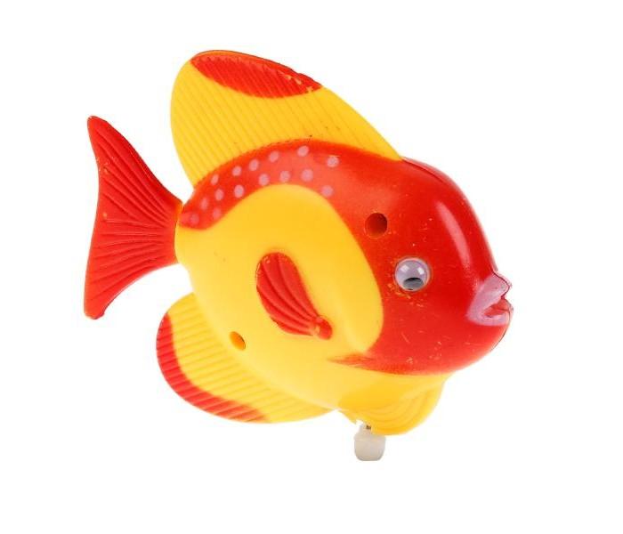 Фото - Игрушки для ванны Умка Заводная рыбка 1102D005-Y1 игрушки для ванны умка книжка для ванны с погремушкой моя рыбка