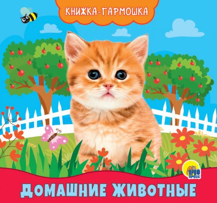 цена на Книжки-картонки Проф-Пресс Книжка-гармошка Домашние животные