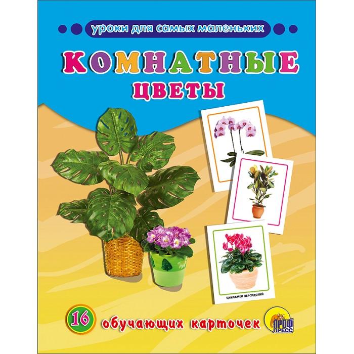 Развивающие книжки Проф-Пресс Обучающие карточки Комнатные цветы