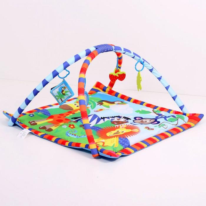 Развивающие коврики La-di-da с дугами PM-B-P00019