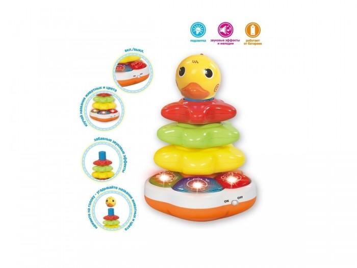 Купить Развивающие игрушки, Развивающая игрушка Zhorya Пирамидка детская музыкальная