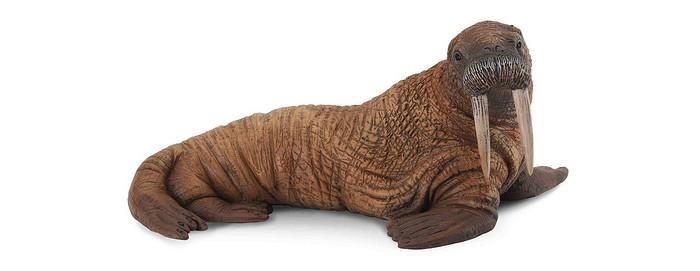 Купить Gulliver Фигурка Морж 11.5 см в интернет магазине. Цены, фото, описания, характеристики, отзывы, обзоры