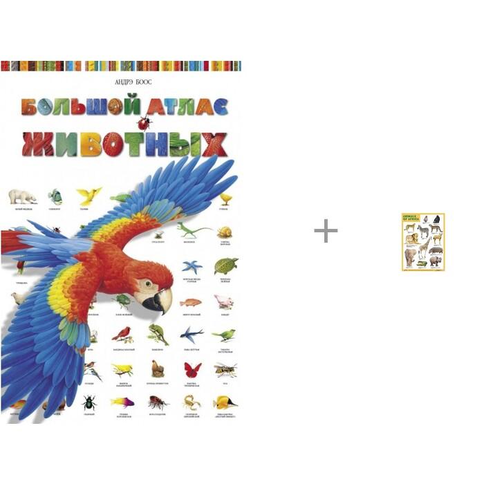 Стрекоза Большой Атлас животных и плакаты (англ) Animals of Africa (Животные Африки) Мозаика-Синтез