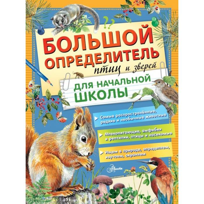 Обучающие книги Издательство АСТ Большой определитель птиц и зверей для начальной школы