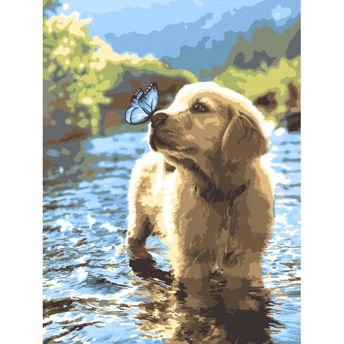 Картины по номерам Lori Раскраска Любопытный щенок