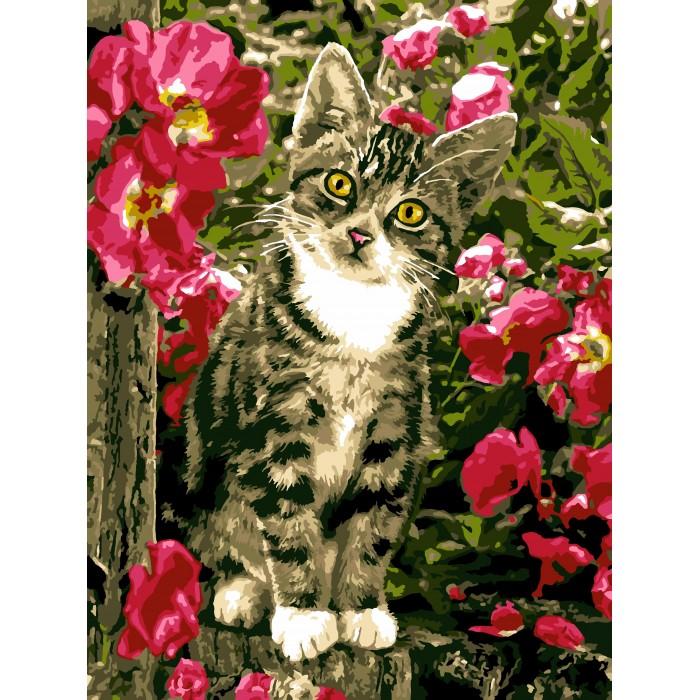 Lori Раскраска по номерам Озорной котёнок — купить в Санкт ...