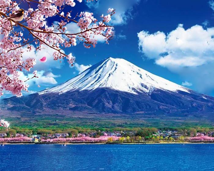 Фрея Кристальная мозаика Священная гора Фудзи 40х50 см