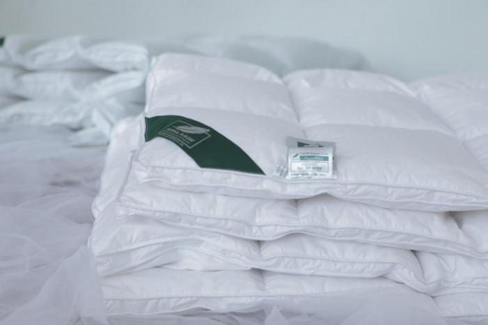 Купить Одеяла, Одеяло Anna Flaum пуховое Flaum Perle Kollektion 220х200 см