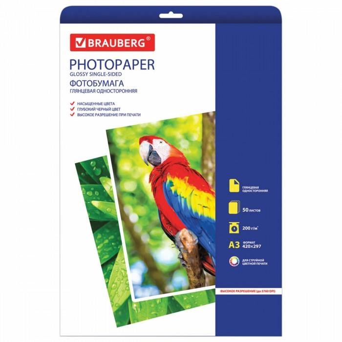 Канцелярия Brauberg Фотобумага для струйной печати односторонняя глянцевая А3 200 г/м2 50 листов фотобумага cactus cs ga6180500 глянцевая 10x15 180 г м2 500 листов