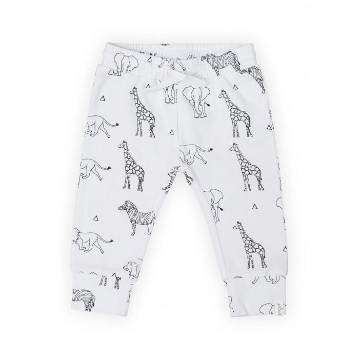 Детская одежда , Брюки, джинсы и штанишки Jollein Штаны Safari арт: 540016 -  Брюки, джинсы и штанишки