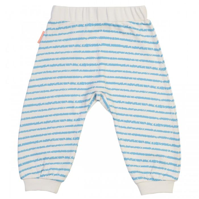 Брюки, джинсы и штанишки Kogankids Штанишки для мальчика 172-003-31 боди и песочники kogankids боди для мальчика 172 004 31