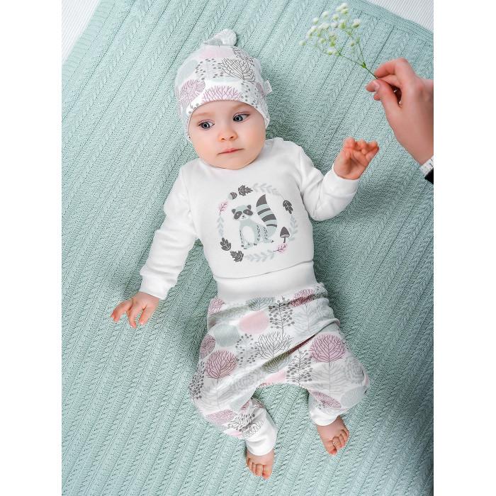 Купить Комплекты детской одежды, Лео Комплект Енотик (боди, штанишки, шапочка) 1006А-8