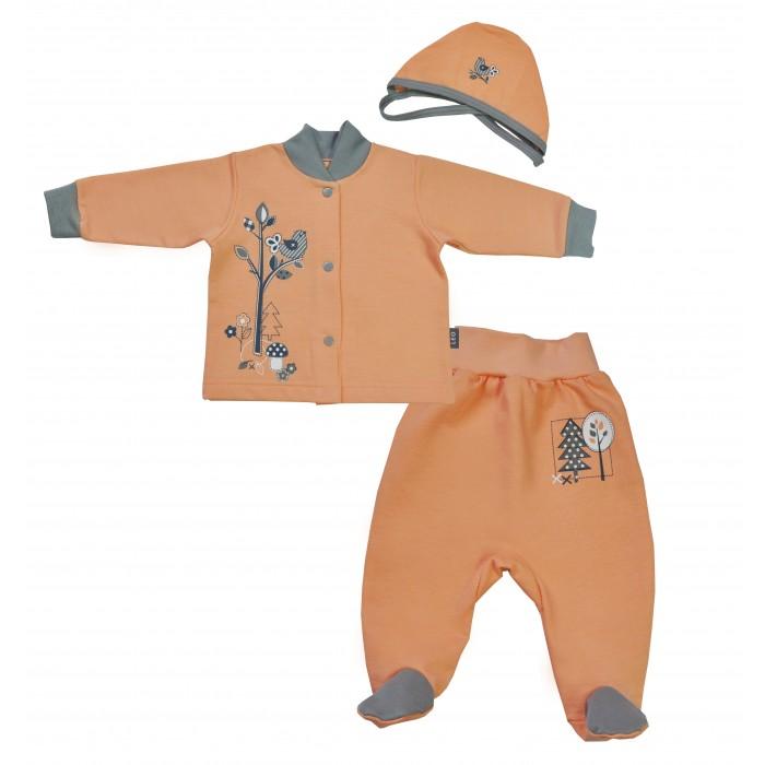 Комплекты детской одежды Лео Комплект Мишка по лесу идет из кофточки, ползунков и шапочки 1568-8ф мишка косолапый по лесу идет