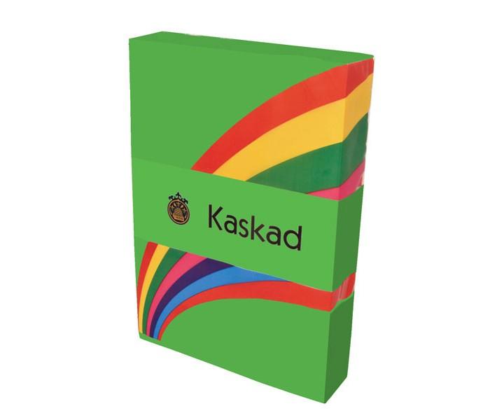 Канцелярия Lessebo Paper Ab Бумага цветная Kaskad А4 160 г 250 листов