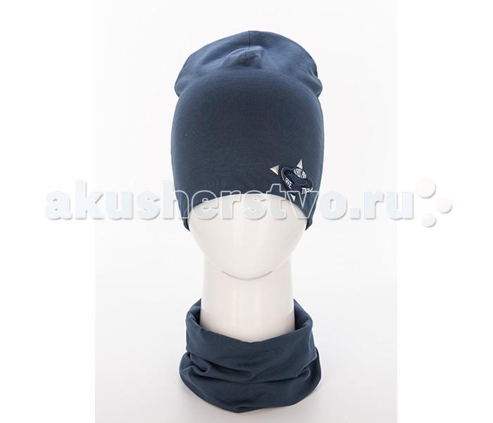 Детская одежда , Шапочки и чепчики Level Pro Kids Комплект для мальчика (шапочка и воротник-хомут) Шеврон Орел арт: 501841 -  Шапочки и чепчики