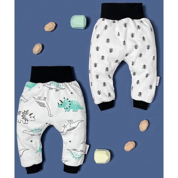 Штанишки и шорты Little Fox Limited Collection Набор штанишек Дино, Елочки 2 шт.